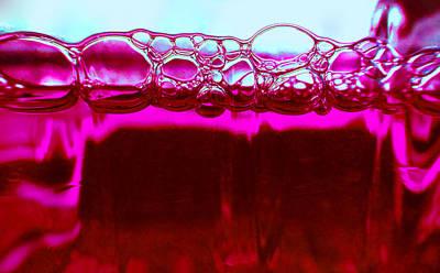 Photograph - Elixir by Laurie Tsemak