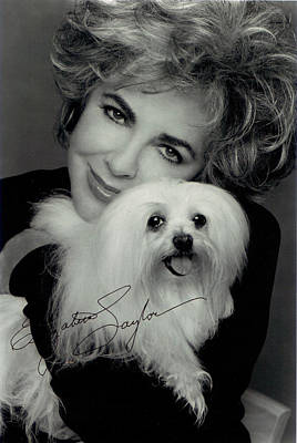 Puppies Digital Art - Elizabeth Taylor And Friend by Studio Photo