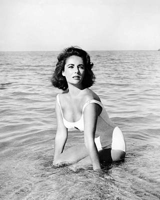 Elizabeth Taylor Photograph - Elizabeth Taylor In Suddenly, Last Summer  by Silver Screen