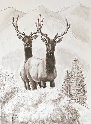 Painting - Elk Encounter by Art By - Ti   Tolpo Bader