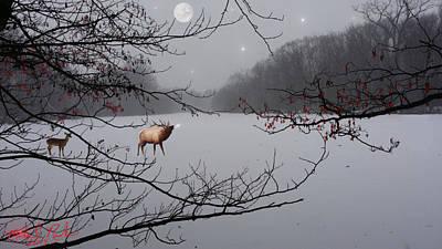 Elk Of The Great Lakes Original