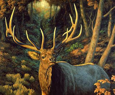 Bucking Bull Painting - Elk Painting - Autumn Majesty by Crista Forest