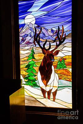 Elk Stained Glass Window Art Print by Robert Bales