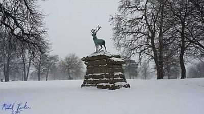 Elks Rest Original by Michael Rucker