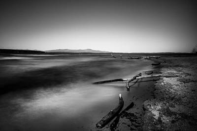 Photograph - Ellacoya Driftwood by Robert Clifford