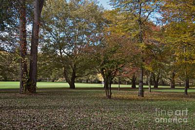 Photograph - Ellison Park by William Norton