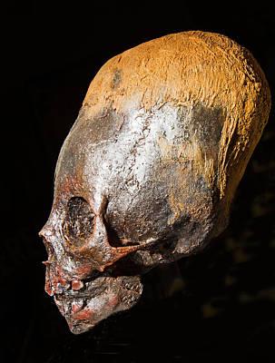 Photograph - Elongated Skull, Paracas Culture by Millard H. Sharp