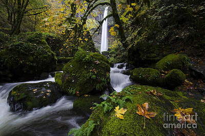 Elowah Photograph - Elowah Falls Columbia River Gorge 2 by Bob Christopher