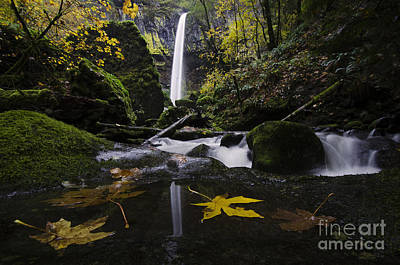 Elowah Photograph - Elowah Falls Columbia River Gorge Oregon 1 by Bob Christopher