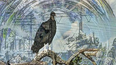 Vulture Mixed Media - Vulture Culture by Bebe