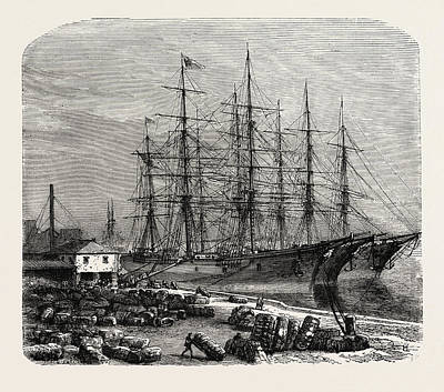 Embarking Cotton At Savannah, United States Of America Print by American School