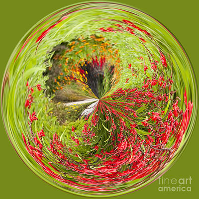Manipulation Photograph - Emberglow Orb by Anne Gilbert