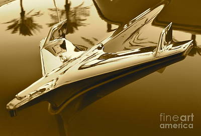 Photograph - Emblem In Sepia by Pamela Walrath