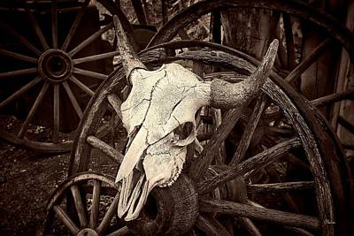 Wagon Wheels Photograph - Embudo Skull by Christine Hauber