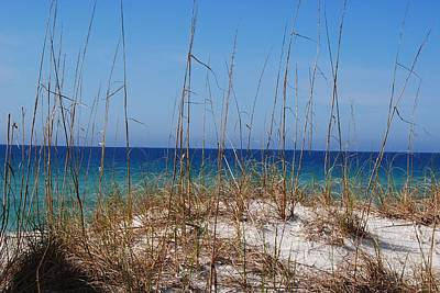 Photograph - Emerald Coast Beaches by Michele Kaiser