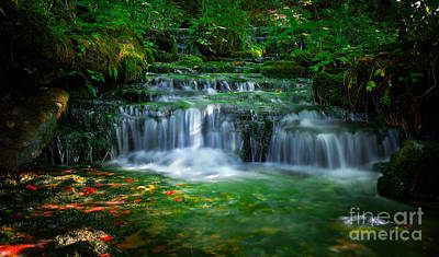 Photograph - Emerald Flow by Wayne Stacy