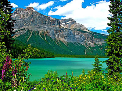 Emerald Lake In Yoho Np-bc Art Print by Ruth Hager