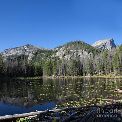 Photograph - Emerald Lake Trail 1 by Kay Pickens