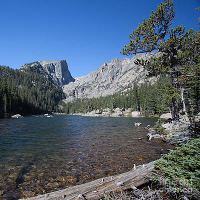 Photograph - Emerald Lake Trail 2 by Kay Pickens