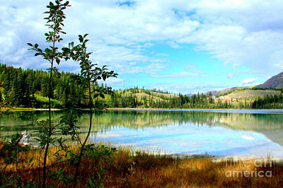 Photograph - Emerald Lakeside by Frank Townsley