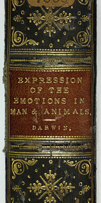 Famous Book Photograph - Emotions In Man And Animals by British Library