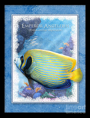 Digital Art - Emperor Angelfish by Randy Wollenmann