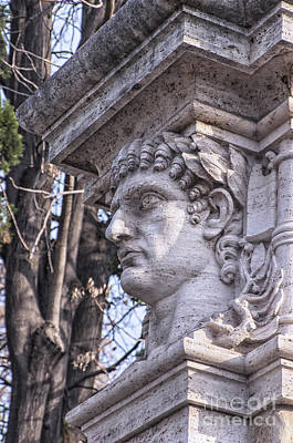 Caesar Augustus Photograph - Emperor Head Statue by Antony McAulay