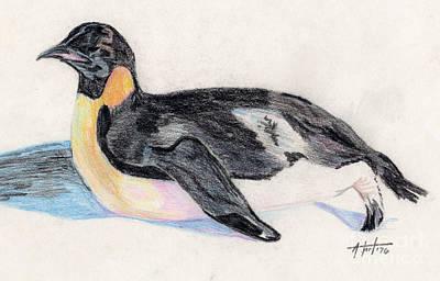 Animals Drawings - Emperor Penguin by Audrey Van Tassell