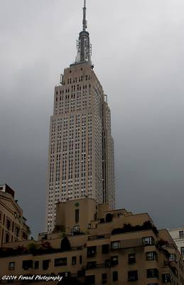 Photograph - Empire State Building  by Debra Forand