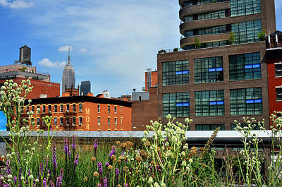 Empire State Building From The High Line Art Print by Diane Lent