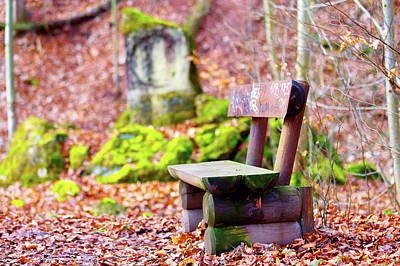 Autumn Leaf Photograph - Empty Bench And Autumn Leaves by Wladimir Bulgar