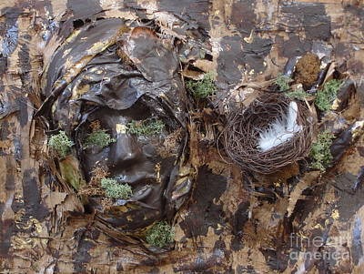 Mixed Media - Empty Nest Always Welcome by Shelley Jones