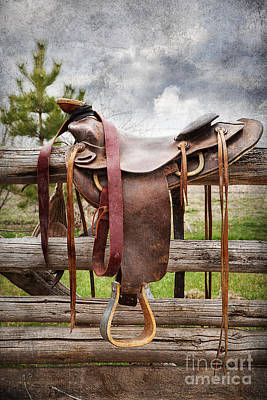 Photograph - Empty Saddle by Cindy Singleton