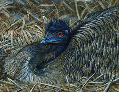 Emu Wall Art - Painting - Emu Elegance by Cara Bevan
