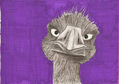 Emu Drawing - Emu by Gabrielle  Leon-Guerrero