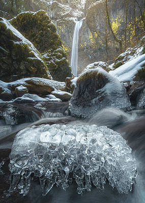 Icy Photograph - Encased by Steve Schwindt