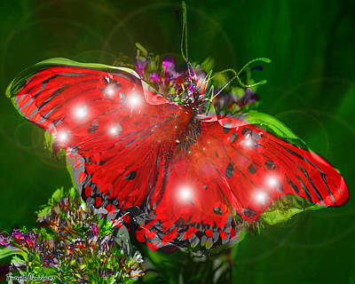 Enchanted Butterfly. Second.  Original