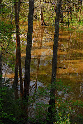 Photograph - Bayou Reflections 3 by Connie Fox