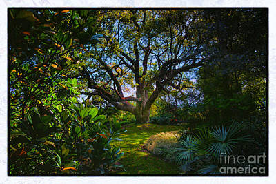 Enchanted Garden Art Print by Rick Bragan