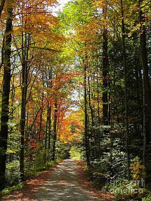 Photograph - Enchanted Path by Linda Marcille