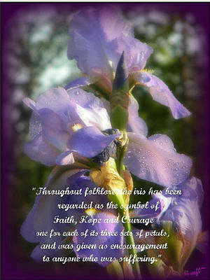Art Print featuring the photograph Encouraging Iris by Michelle Frizzell-Thompson