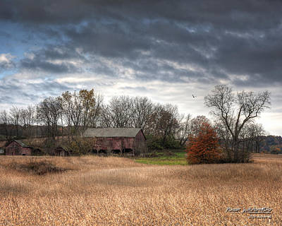 Photograph - End Of Fall - Ohio IIi by Roman Wilshanetsky