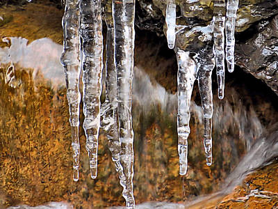 Photograph - End Of March Icicles by Janice Drew
