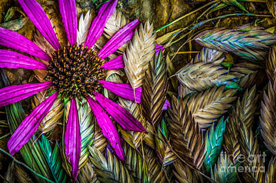 Photograph - End Of Summer Color by Michael Arend