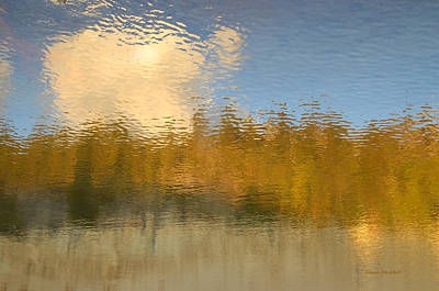 Photograph - End Of Summer by Donna Blackhall
