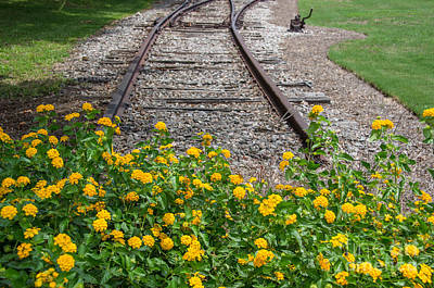 Photograph - End Of The Line by Dale Powell