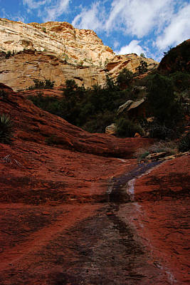 Photograph - End Of The Trail At Boynton Canyon by Daniel Woodrum
