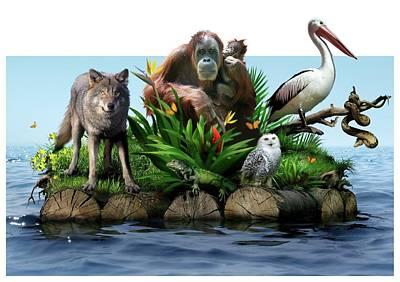 Orangutan Wall Art - Photograph - Endangered Animals by Smetek