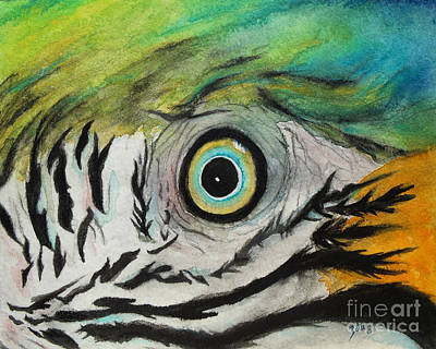 Painting - Endangered Eye II by Suzette Kallen