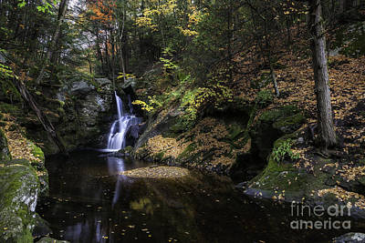 Photograph - Enders Gorge Autumn - Luminous Light  by Expressive Landscapes Fine Art Photography by Thom